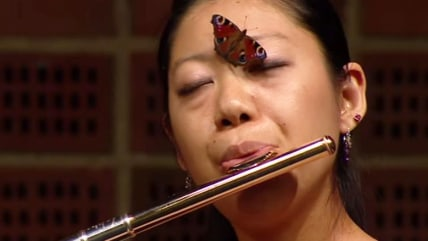 Image: Butterfly on flutist