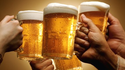 hands, beer, mug, pitcher, frothy, cold, delicious