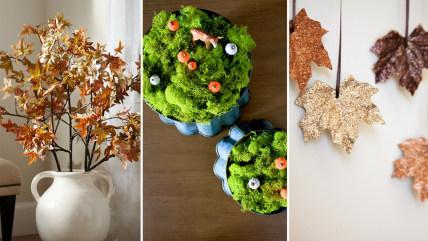 Boxwood Clippings, Kirsten Krason