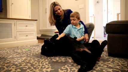 Boy with autism gets help from service dog