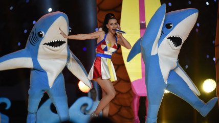 The dancing sharks stole the show during Katy Perry's Super Bowl halftime performance.