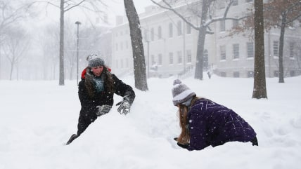 Kelly Steeves, left, and Ellie Lasater-Guttmann, both freshmen at Harvard, make an igloo in Harvard Yard on January 27, 20...