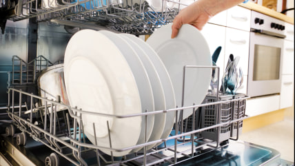 close-up of female hands loading dishes to the dishwasher; adult; blue; casual; caucasian; cleaning; close-up; clothing; dishes; dishware; dishwasher;...