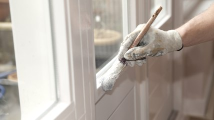 Hand with paintbrush painting a door white; brush; coat; collar; concentrating; concentration; construction; craftsman; detail; diy; do-it-yourself; e...