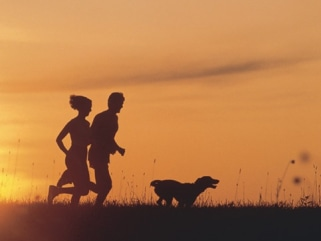 Woman and Man running with a dog at sunset, loving life and breathing fresh air.  Isn't it lovely, go run you lazy bastard.  Exercise, dog, people, ru...