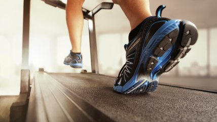 Man running in a gym on a treadmill concept for exercising, fitness and healthy lifestyle; action; active; activity; athlete; athletic; cardio; care; ...