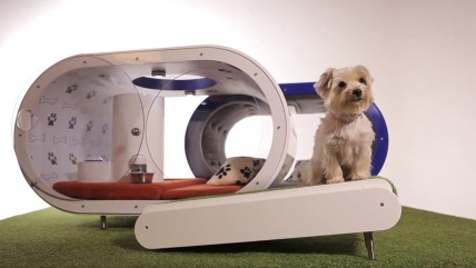"On Wednesday, Samsung Electronics unveiled the ""Dream Doghouse."""