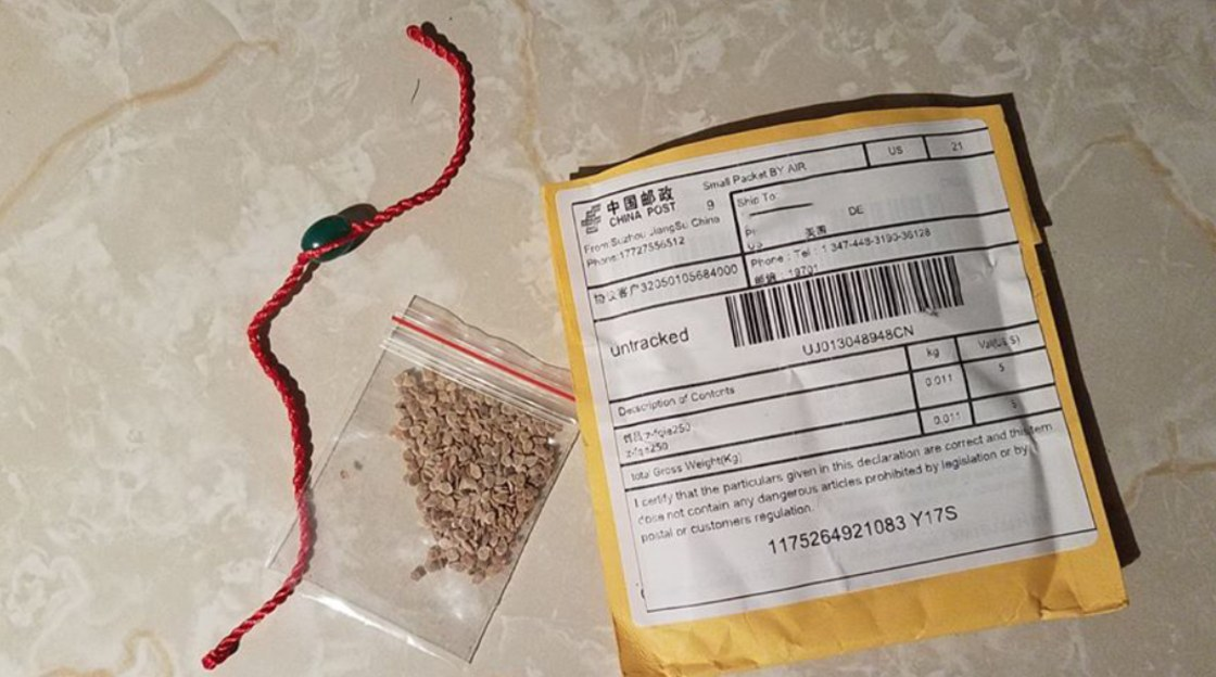 seeds in a clear bag next to a yellow envelope