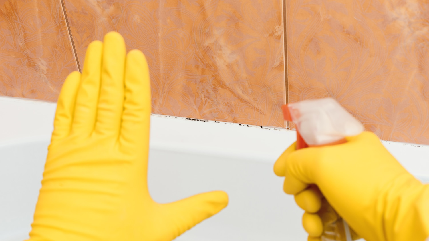 How to remove mold and mildew from walls, clothes and more