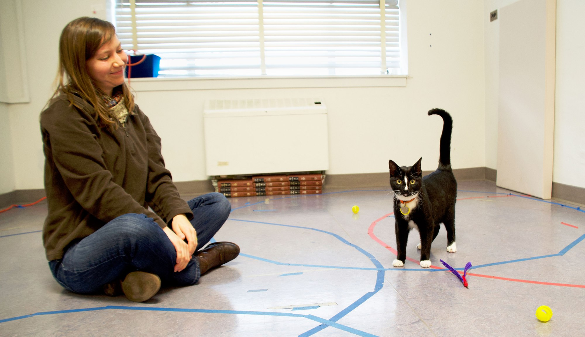 Science Proves Cats Need People