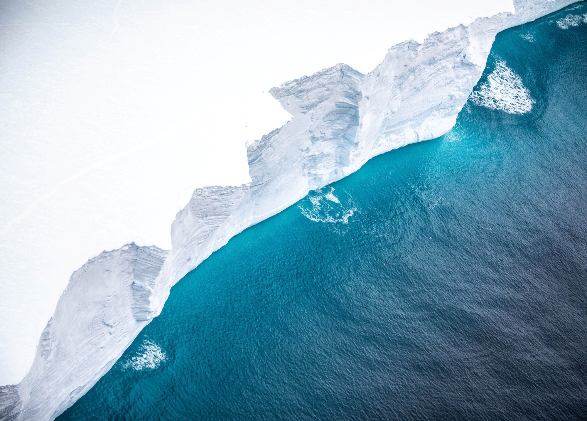 Giant Iceberg Could Collide With South Georgia Island This Month, Endangering Wildlife