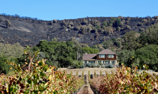 Image: The Partrick Fire torched Mt. Arrowhead, just above Gundlach Bundschu Winery