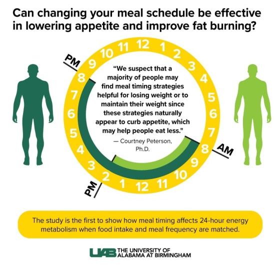 obesity diet intermediate fasting