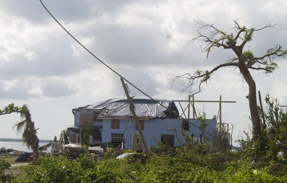 green turtle cay foundation