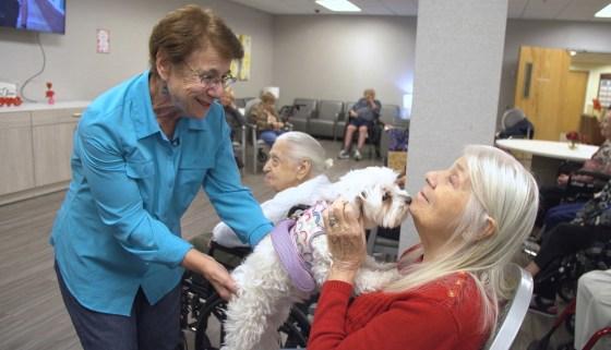 Chien de thérapie Visite d'une citrouille aux résidents d'une maison de retraite Laura Spotteck