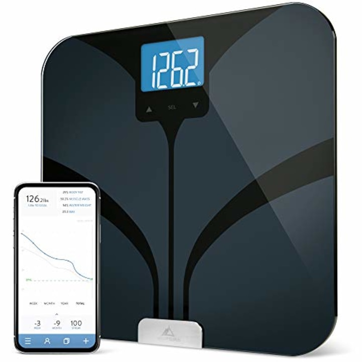 . 7 best digital bathroom scales for 2019