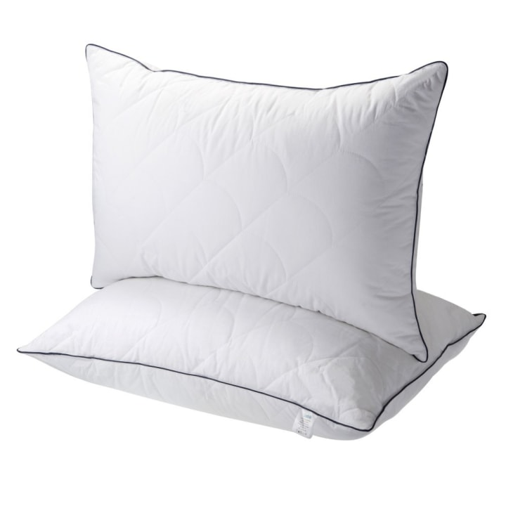 Sable Down Pillows