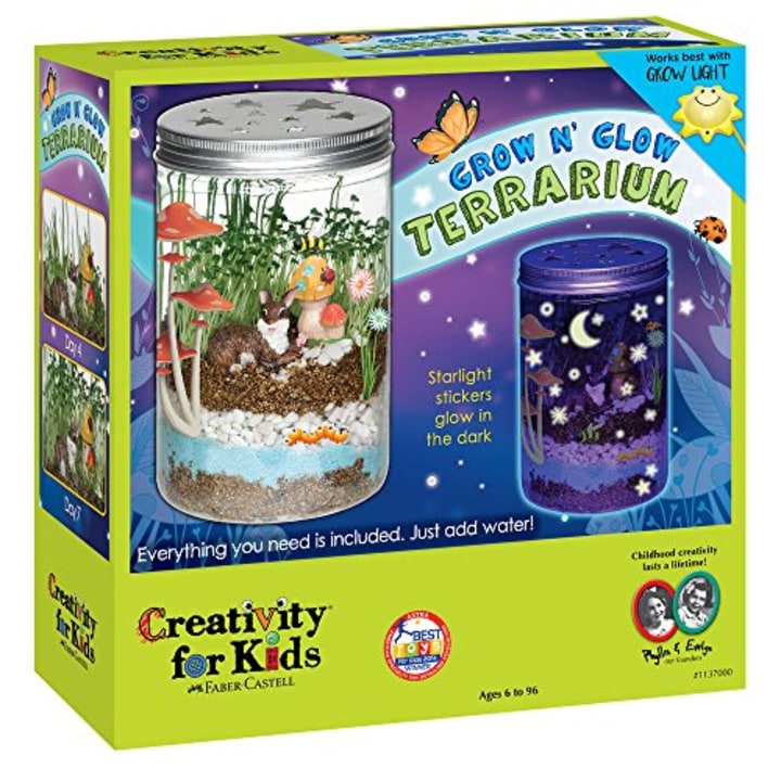 ff2c1b3d455 Creativity for Kids Grow  n Glow Terrarium - Science Kit for Kids