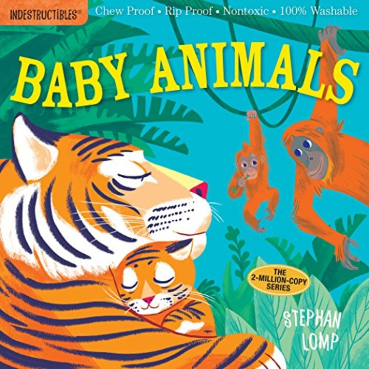 This 6 Indestructible Book Keeps My Baby Entertained Forever border=