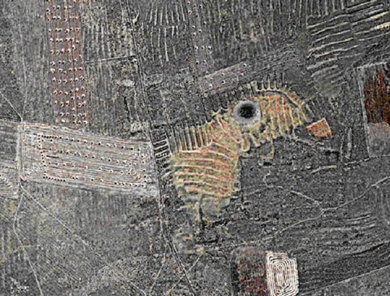 This appears to be an image of a bird, where a circular pond is the eye.