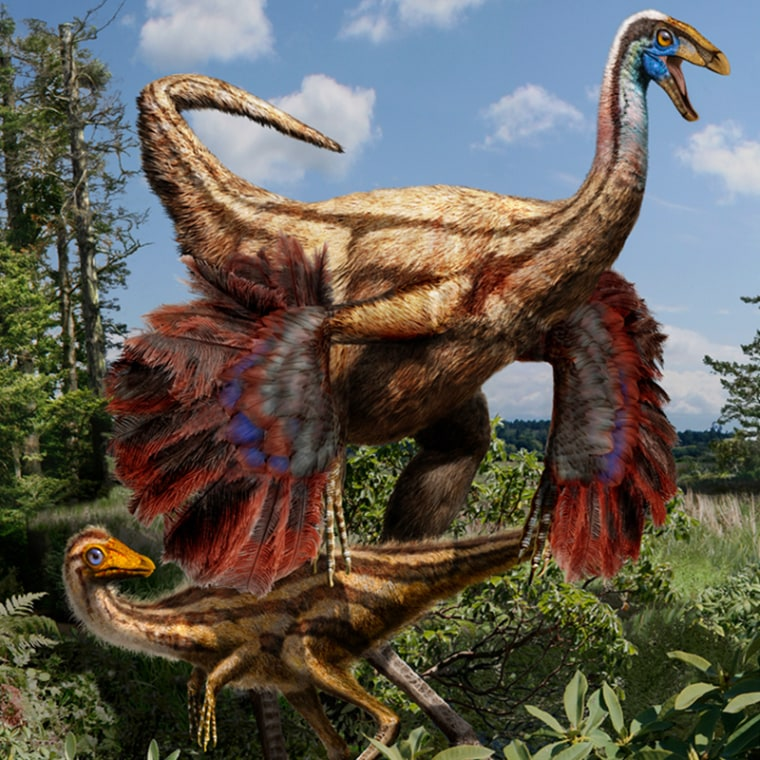 Image: Artistic reconstruction of a feathered ornithomimid