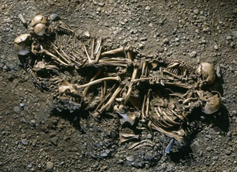 Image: Skeletons
