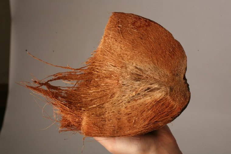 Image: Coconut husk