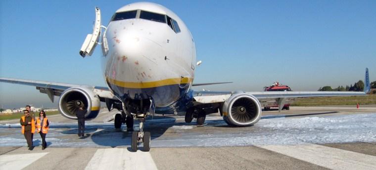 Image: Bird strike on plane