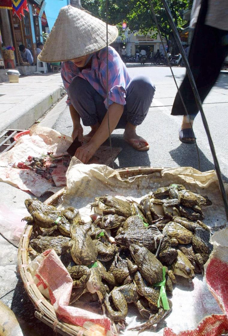 Image: vendor cuts frogs into pieces
