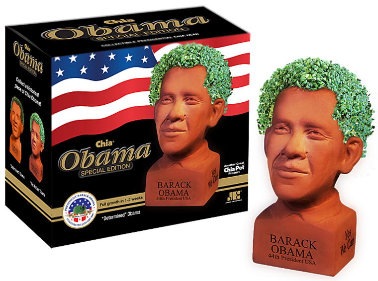 Image: Chia Obama edition