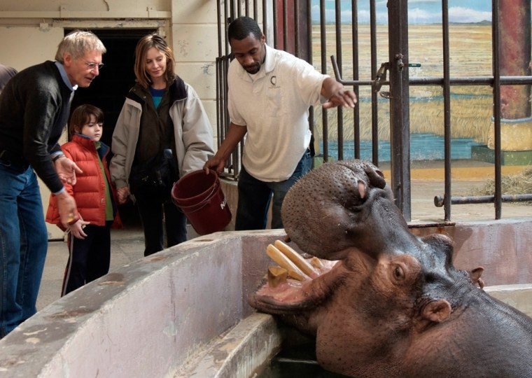 Happy the hippo won't begoing solo much longer: He's headed for the Milwaukee County Zoo this summer.