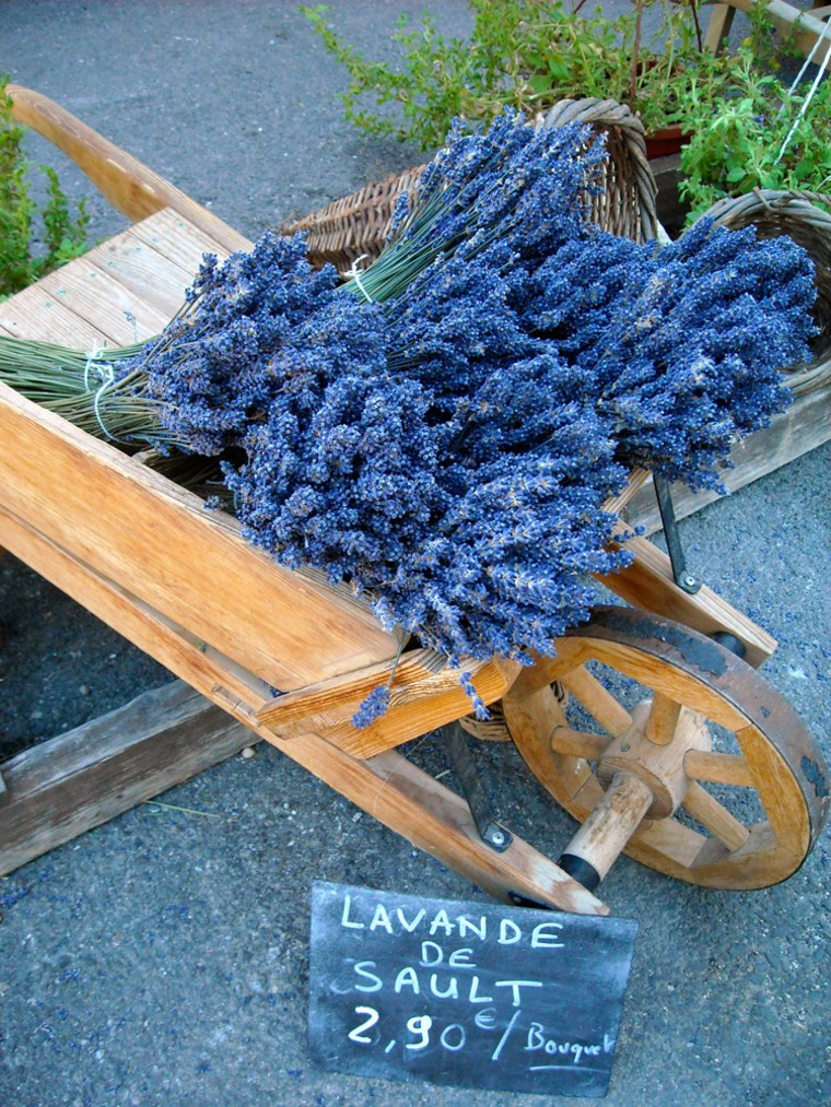 Image: dried lavender grown in the fields of Sault
