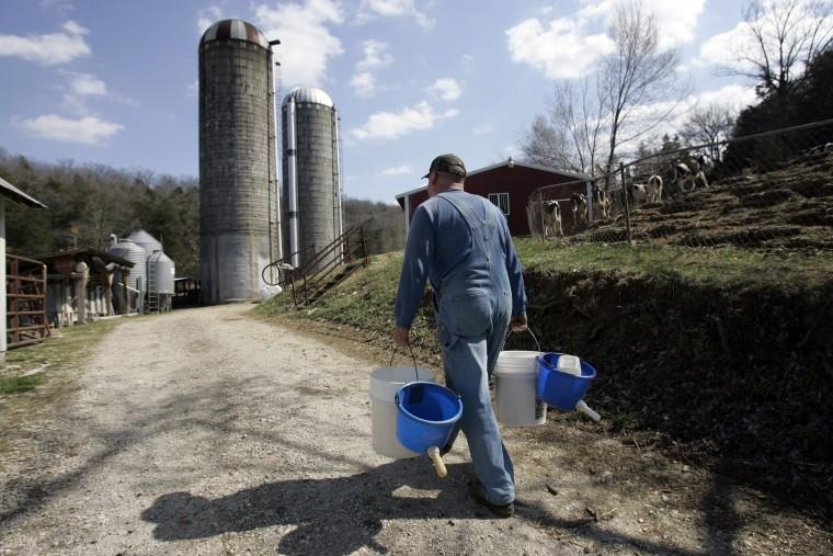 Image: Dairy farmer Darrell Kraus