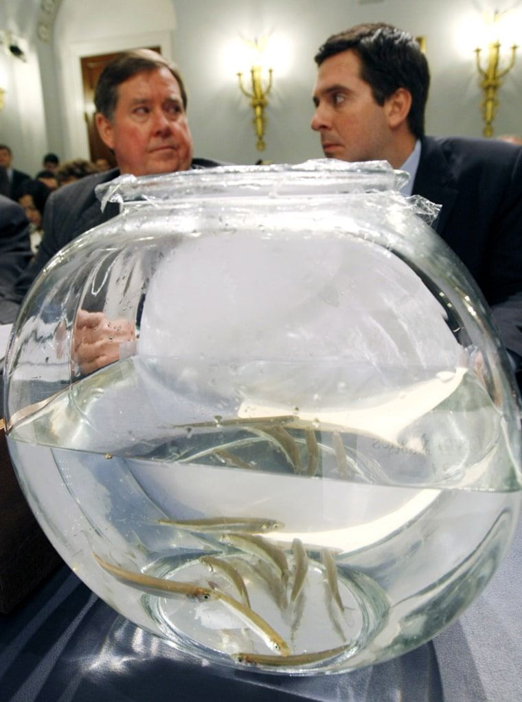 Image: A fishbowl sits atop a table during a House hearing on the California drought in Washington