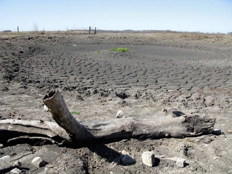 Image: dried up stock tank near Taylor, Texas