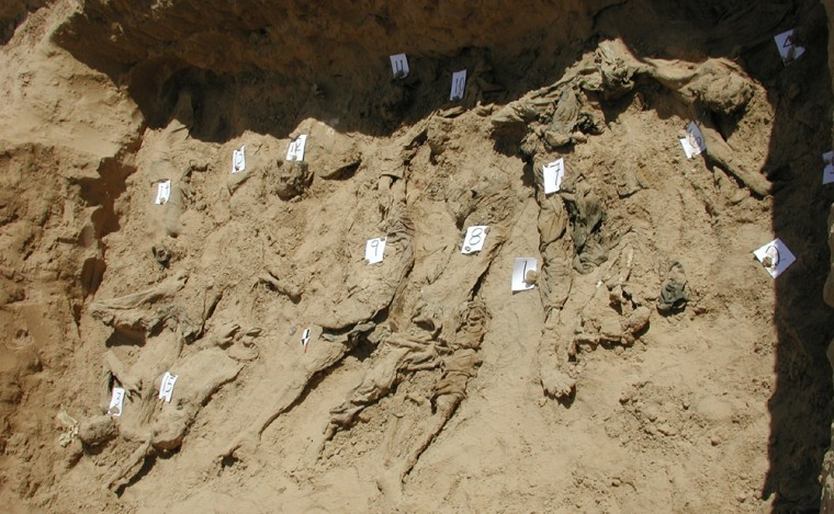 Image: A test trench dug by Physicians for Human Rights forensic experts as part of a preliminary investigation