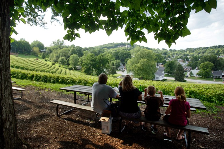 Image: a family overlooking Stone Hill Winery near Katy Trail