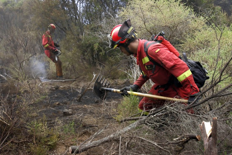 Image: Members of the Spanish Army Emergency Unit (UME) attempt to extinguish a fire