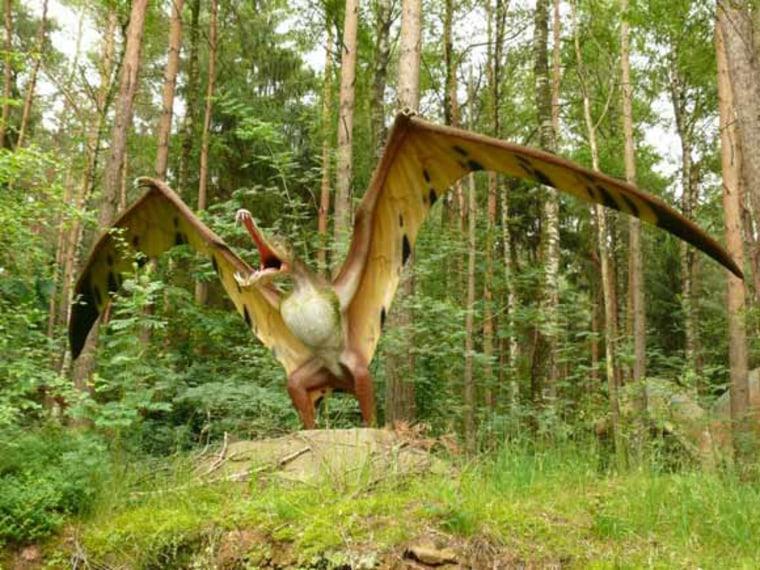Image: Pterosaur