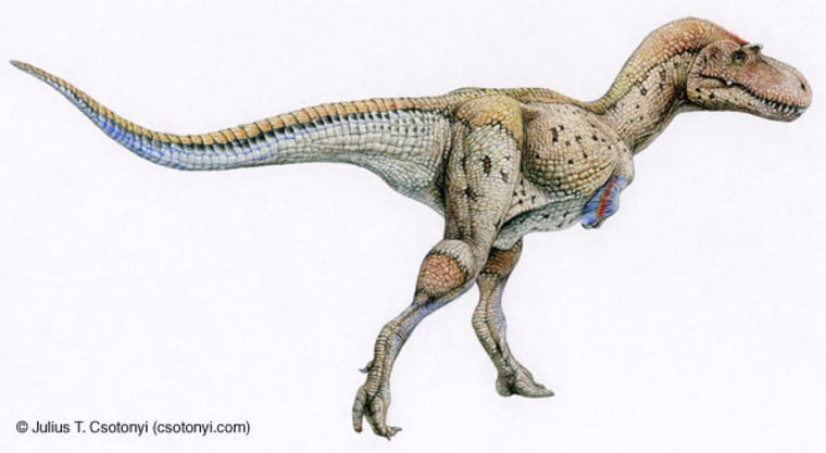Image: A colorful artist's representation of the fearsome carnivore, Tyrannosaurus rex.