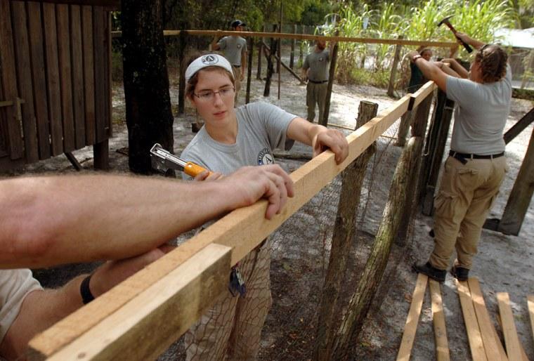 Image: Crews fix a chicken coop in Georgia