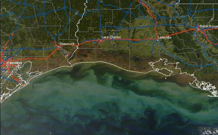 This satellite-based image shows brownareas along the Texas and Louisiana coasts where vegetation hasbeen killed off by saltwater after Hurricane Ike pushed seawater inland. The brown area in the gulf indicates sediment taken from the coast when surge waters flowed back out.