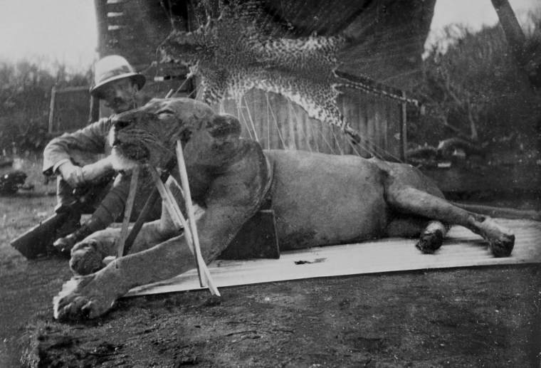 Image: Patterson and man-eating lion