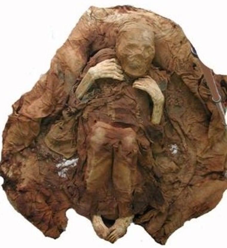 Image: Remains of ancient Peruvian
