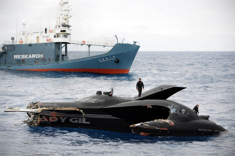 Image: Japanese whaling vessel and activists collide