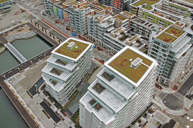 About 50 percent of the residential buildings in the Southeast False Creek project, which will house athletes during the Games, have roofs covered in grass, which absorb rainwater, provide insulation and attract wildlife.