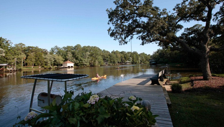 Image: Magnolia river in Alabama