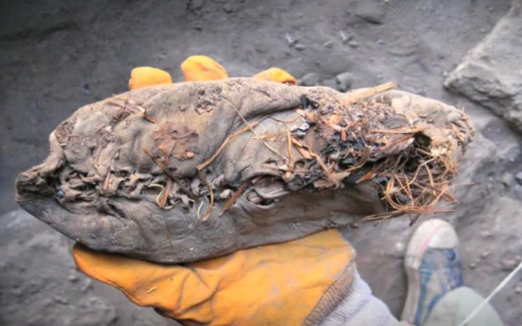 Archaeologists found this 5,500-year-old leather shoe, laced at the top and padded with grass, in a cave in Armenia.