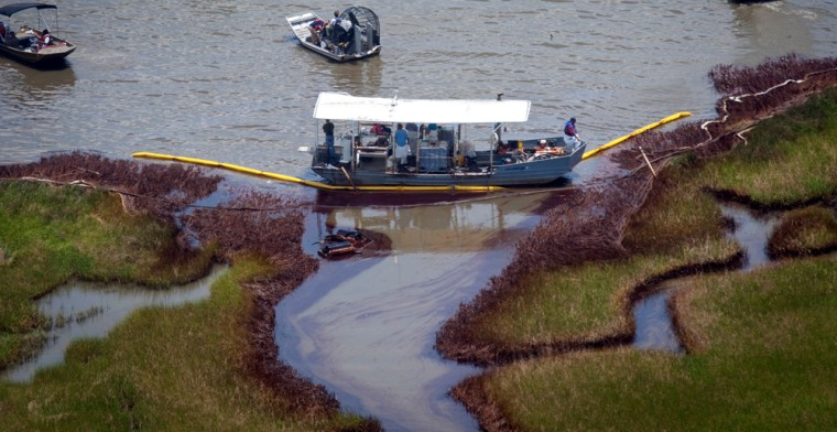Image: Work crews on boats gather to clean marshland near Bay Jimmy impacted by oil from Deepwater Horizon spill in Barataria Bay, Louisiana