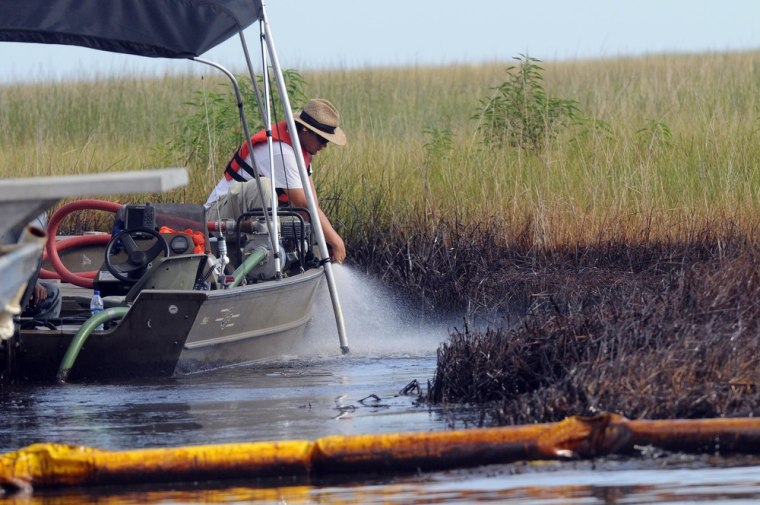 Image:  A workers washes the oiled grass in Barataria Bay